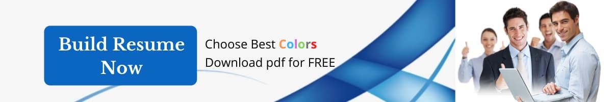 online-resume-builder-link-resume-colors